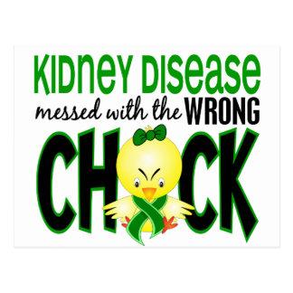 Enfermedad de riñón ensuciada con el polluelo postal