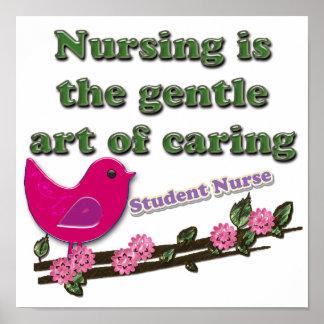 Enfermera de estudiante poster