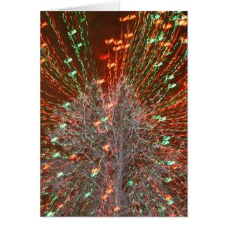 Enfoque de las luces de navidad del árbol de Live Tarjeta Pequeña