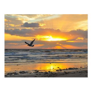 Engagement Proposal Sunrise on the Beach Postcard