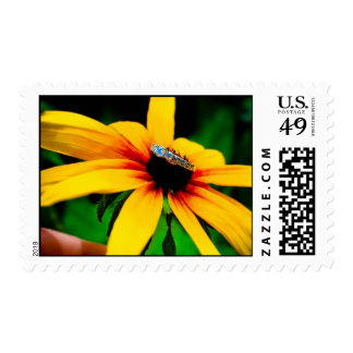 Engagement Ring on Black Eyed Susan Postage