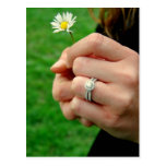 Engagement ring with Daisy Post Card
