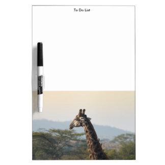 Enganchar un paseo en una jirafa tablero blanco