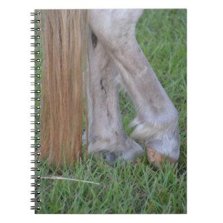 enganches traseros equinos del caballo una cola de libretas
