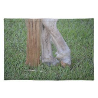 enganches traseros equinos del caballo una cola de manteles individuales