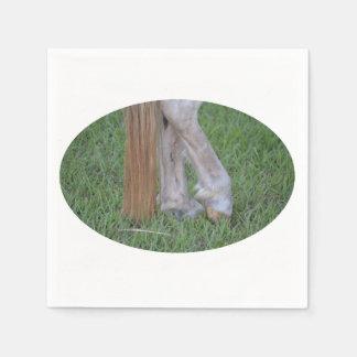 enganches traseros equinos del caballo una cola de servilletas de papel