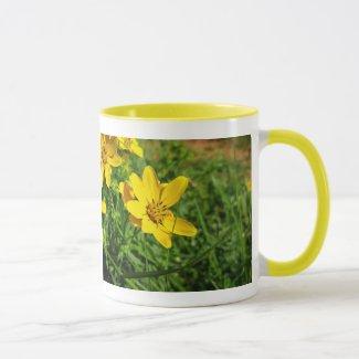 Engelmann Daisy ( Engelmannia peristenia ) Mug