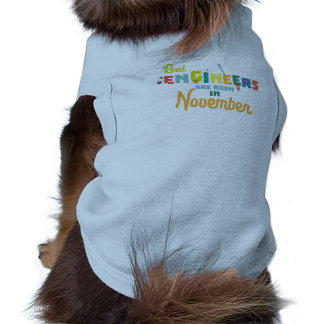Engineers are born in November Z9g4h Shirt