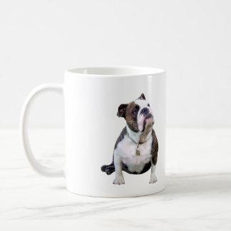 Engish Bulldog - brown and white Mug