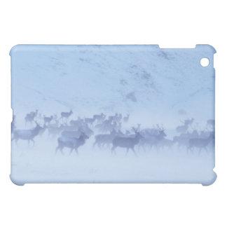 England iPad Mini Cases