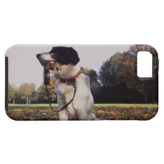 England, St.Albans iPhone 5 Covers