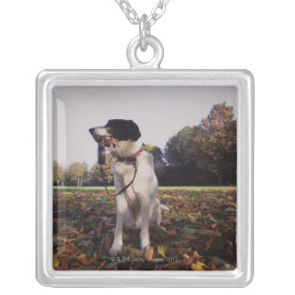 England, St.Albans Silver Plated Necklace