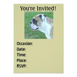 Englis Bulldog Invitations Birthday/any occasion