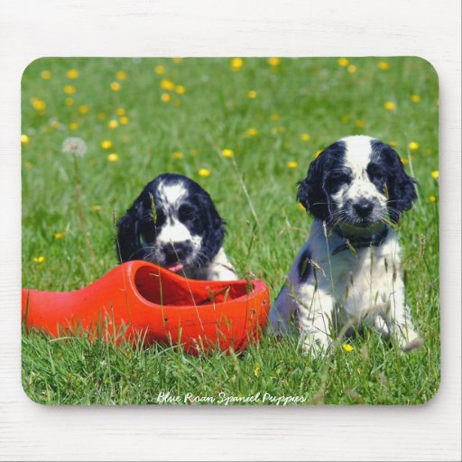 English Blue Roan Cocker Spaniel Puppies Mousepad