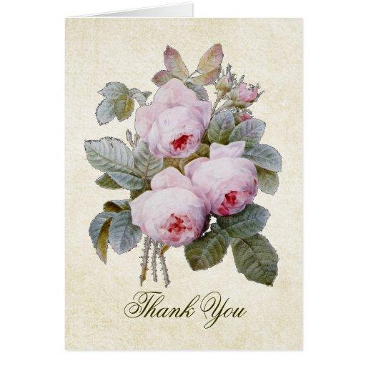 English Bourbon Rose Bouquet Thank You Card