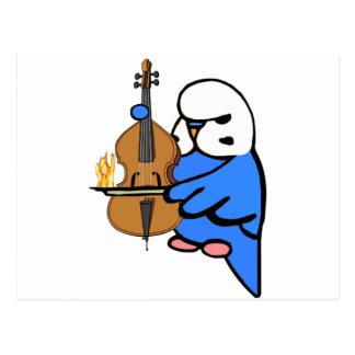 English Budgie Plays Bass Cello Postcard