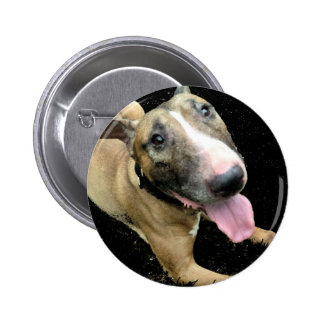 English Bull Terrier Button Badge