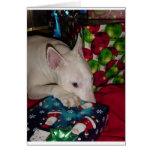 english bull terrier christmas present card