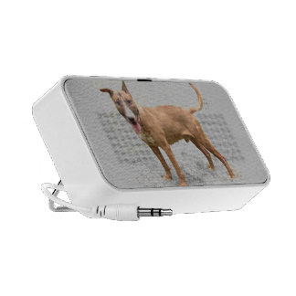 English Bull Terrier Doodle Speaker System