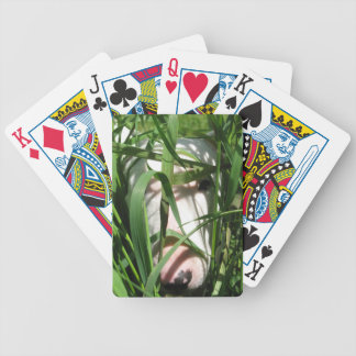 English Bull Terrier Hiding in the Grass Bicycle Playing Cards