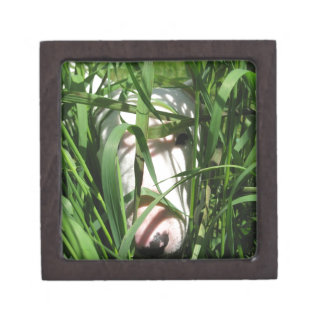 English Bull Terrier Hiding in the Grass Gift Box
