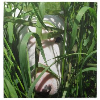 English Bull Terrier Hiding in the Grass Napkin