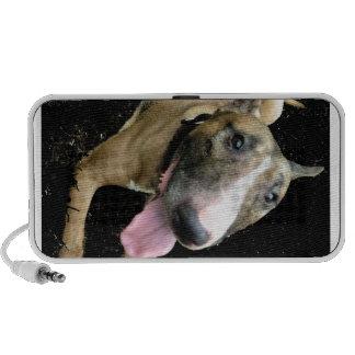 English Bull Terrier iPhone Speaker