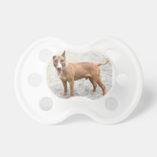 English Bull Terrier Pacifier Dummy
