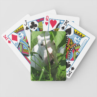 English Bull Terrier Peeking Through the Leaves Bicycle Playing Cards