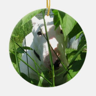 English Bull Terrier Peeking Through the Leaves Ceramic Ornament
