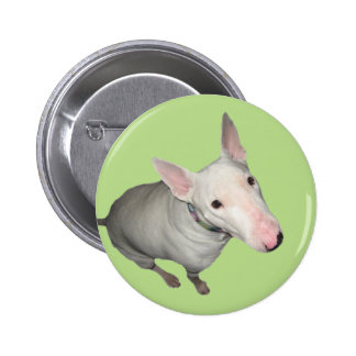English Bull Terrier Sitting Pretty 2 Inch Round Button