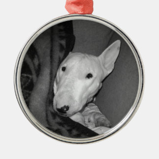 English Bull Terrier Snuggled Under a Blanket -BW Metal Ornament