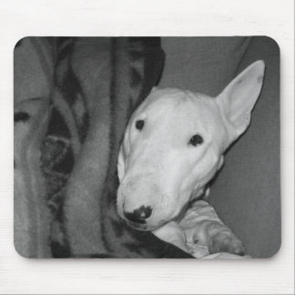 English Bull Terrier Snuggled Under a Blanket -BW Mouse Pad