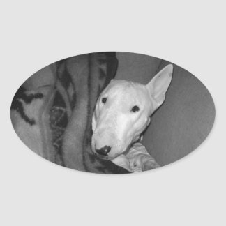 English Bull Terrier Snuggled Under a Blanket -BW Oval Sticker