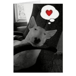 english bull terrier valentine greeting card