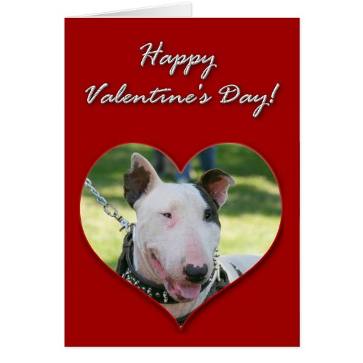 English Bull Terrier Valentines Day Card