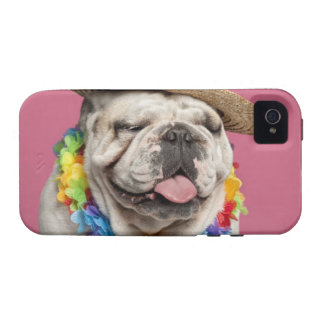 English Bulldog 18 months old wearing a straw iPhone 4 Case