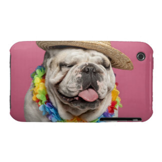 English Bulldog (18 months old) wearing a straw Case-Mate iPhone 3 Cases