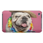 English Bulldog (18 months old) wearing a straw iPod Touch Cases