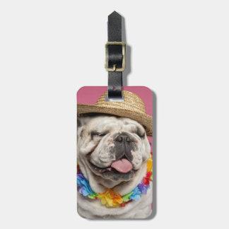 English Bulldog (18 months old) wearing a straw Luggage Tag