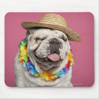 English Bulldog (18 months old) wearing a straw Mousepads