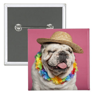 English Bulldog (18 months old) wearing a straw Pinback Button