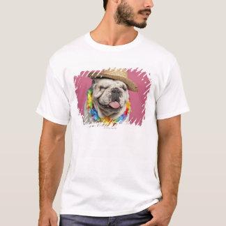 English Bulldog (18 months old) wearing a straw T-Shirt