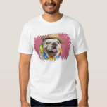 English Bulldog (18 months old) wearing a straw T-shirts