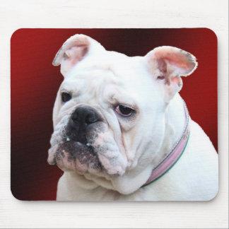 English bulldog 2 mousepad