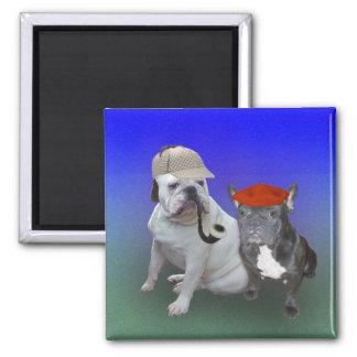 English bulldog and French bulldog 2 Inch Square Magnet