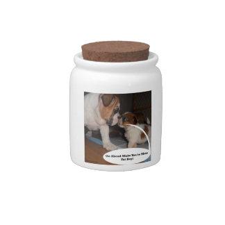 English Bulldog and Shih-Tzu Puppy Showdown Candy Jars