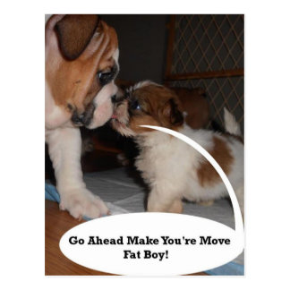 English Bulldog and Shih-Tzu Puppy Showdown Postcard
