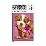 English bulldog and shoe postage stamps