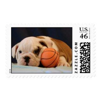 English Bulldog Basketball Puppy Postage Stamp